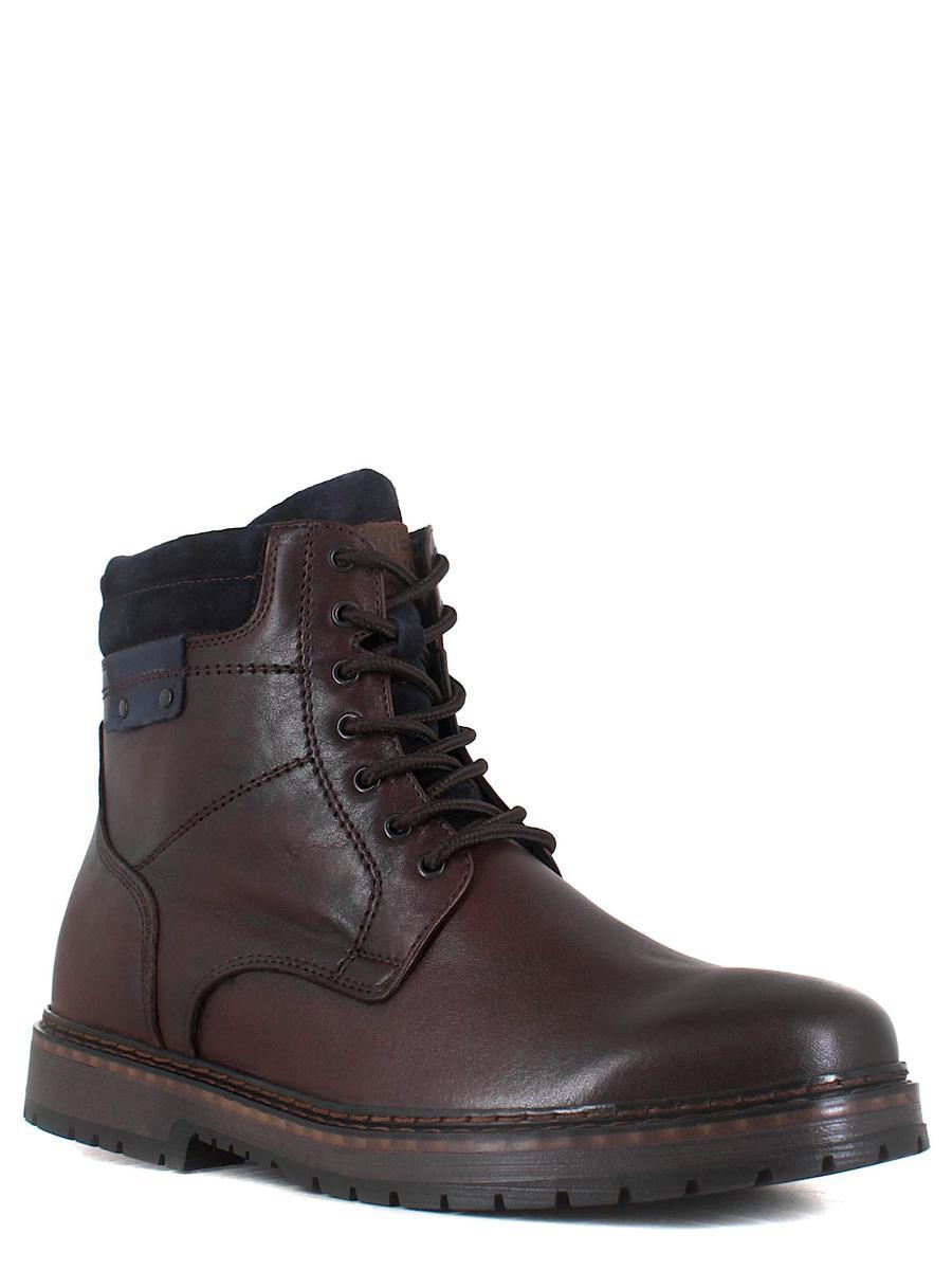 Enrico ботинки 2562-380 цвет 162 коричне